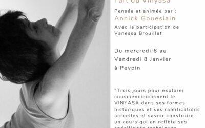 Post formation : l'art du Vinyasa avec Annick Goueslain